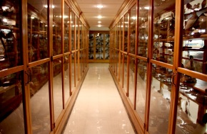 Fig.1. Antique Cabinet Museum in Pennsylvania holds many natural history curiosities (Credit: Michelle J. Enemark, 2011).